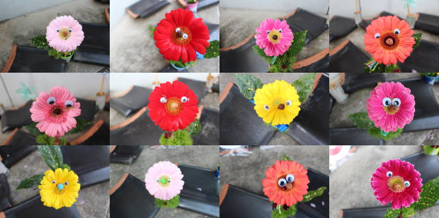 200421-flowers